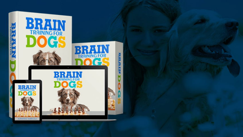 Cheap Brain Training 4 Dogs Obedience Training Commands Amazon Prime Day