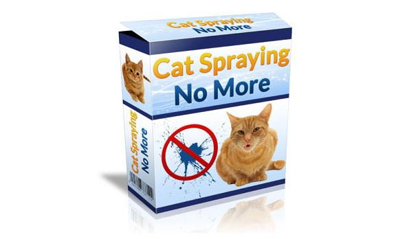 cat spraying no more product