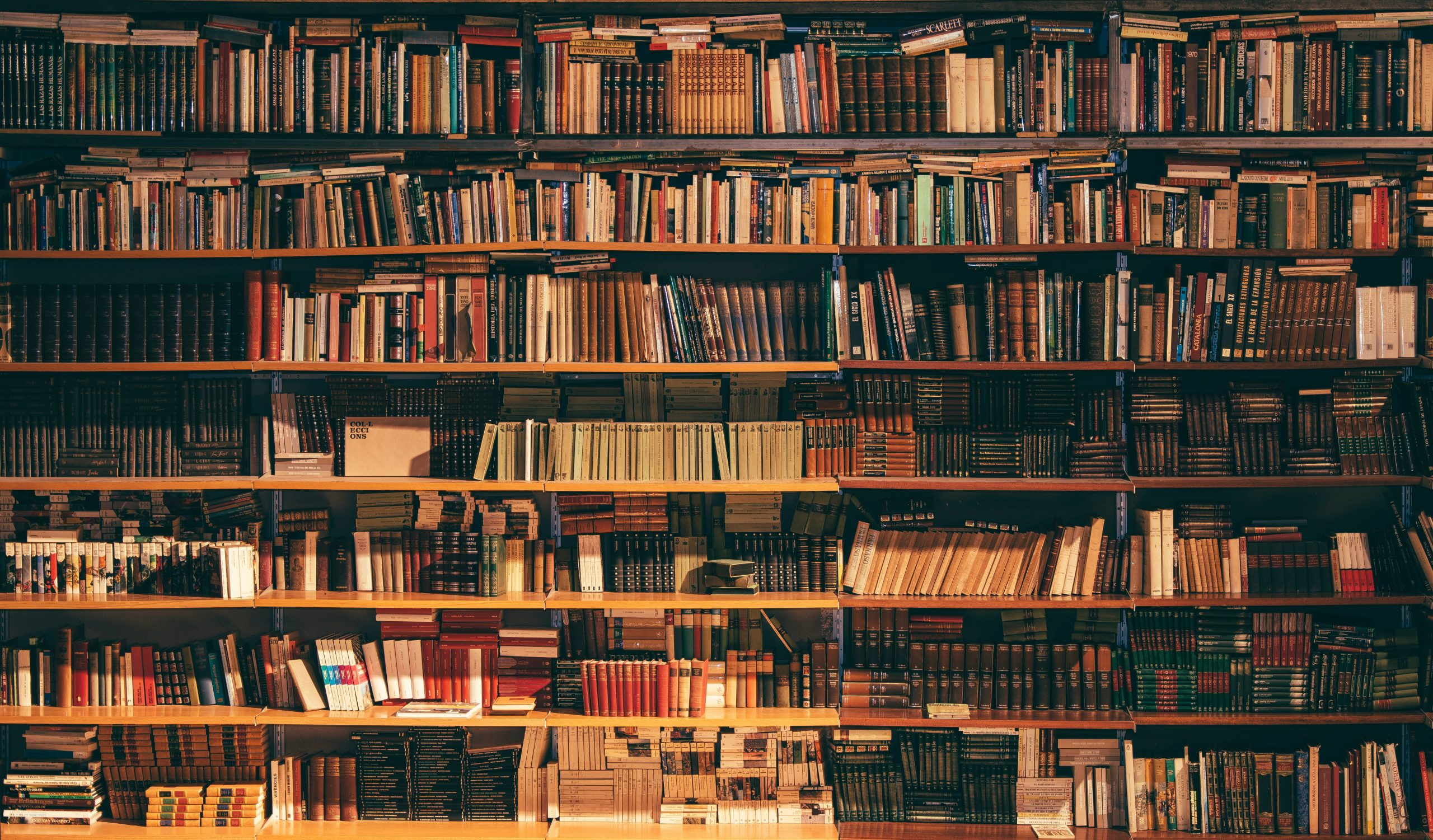super reading by jim kwik (1)