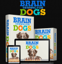 Brain Training For Dogs Review – We've Tried It for 3 Weeks (with proof)